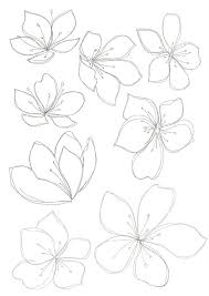 the 25 best flower design drawing ideas on pinterest