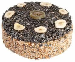 Billig Kuchen Kaufen Yummy Ein Echter Vogel Kuchen Kaufen Für Outdoor Vögel
