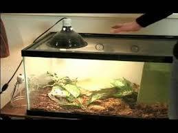 reptile terrarium setup heating a reptile terrarium youtube