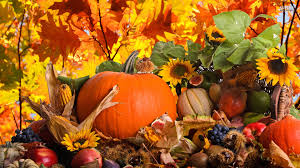 images about autumn on thanksgiving screensaver 1920x1080