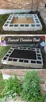 20 insanely clever gardening tips and ideas with pictures