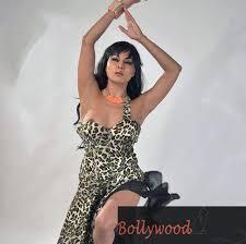 blouse nip slip moments of veena malik aishwarya