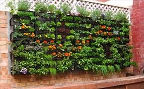 rain gutter vertical vegetable garden fasci garden