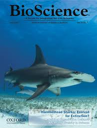 abaco scientist a new paper on hammerhead shark conservation