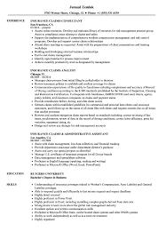 resume templates word accountant trailers plus peterborough insurance claims resume sles velvet jobs