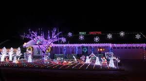 enchanted forest christmas lights surprising idea enchanted forest led christmas lights c7 c6