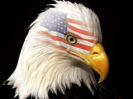 Bald Eagle And American Flag Bald Eagle Hd Wallpapers American Eagle Hd Pictures U2013 Hd