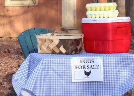how to sell chicken eggs hgtv
