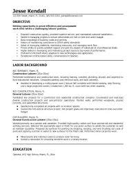 sample resume objectives resume objectives for it professionals