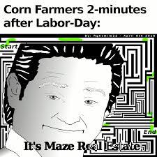 It S Free Meme - meme art gifs search find make share gfycat gifs