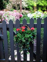 garden gate flowers 16 hanging flower pot plant ideas to enhance your veranda and home