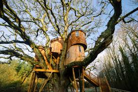 Coolest Treehouses The Uk U0027s 6 Best Treehouses The Independent
