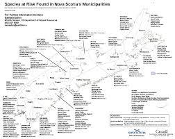 Nova Scotia Canada Map by Nova Scotia U0027s Species At Risk Municipal U0026 Community Stewardship