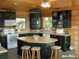 black kitchen cabinets in log cabin which kitchen do you like weddingbee log cabin kitchens