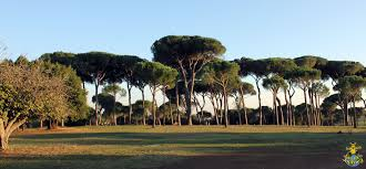 villa doria phili park rome jaspa s journal