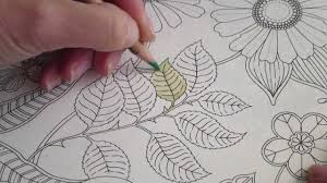 secret garden colouring book postcards secret garden colouring book how i colour a leaf how to