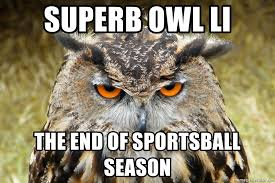 Superb Owl Meme - superb owl li the end of sportsball season grouchy owl meme