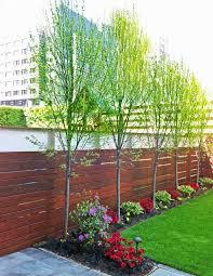 Landscaping Backyard Ideas Best 25 Landscaping Along Fence Ideas On Pinterest Privacy