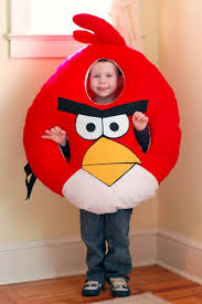 best 25 angry bird pictures ideas on pinterest funny bird