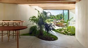 a daylit extension with a lush indoor garden