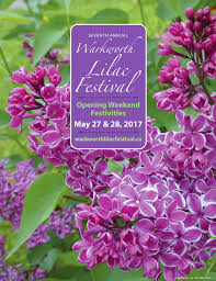 Lilca by Home Warkworth Lilac Festival