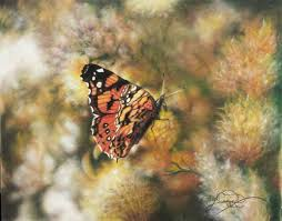 butterflies and birds in colored pencil and pastel artists network