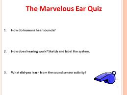 Human Ear Anatomy Quiz The Marvelous Ear How Do Our Ears Work Quiz 1 How Do Humans