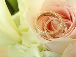 Wedding Flowers Background Roses With Wedding Rings Flowers Nature Background Wallpapers On