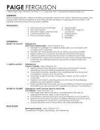 resume skills and abilities exles sales skills exles resume resume skills summary exles sle