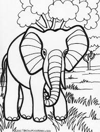 printable elephant coloring pages adults coloring