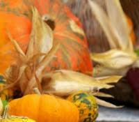 blessing basket s thanksgiving devotional
