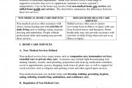 non medical home care business plan template non medical home care business plan template exle sle 35