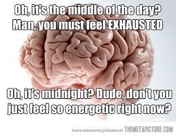 Scumbag Brain Meme - how my brain functions the meta picture