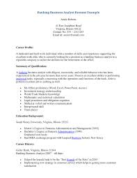 Resume Summary Examples For Customer Service by Business Analyst Resume Summary Examples Resume For Your Job