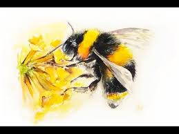 watercolor bumblebee painting demonstration youtube