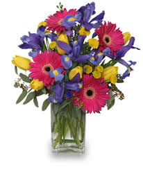 cut flowers fresh flower care tips for your newly delivered flowers