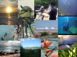 imagenes monumentos naturales de venezuela parques nacionales y monumentos naturales de venezuela y su