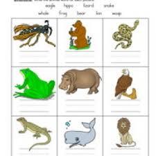 science worksheets have fun teaching