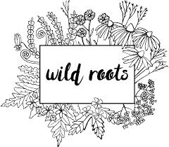 nj native plant society native gardening resources u2013 wild roots