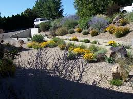 are you water wise a look at xeriscapes yard ideas blog