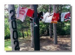 Backyard Graduation Party Ideas by Graduation Party Decorations