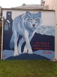 this is friz art by friz wall commissioned by sligo tidy towns i wanted to create a mural that celebrated the sligo connection that bram stoker has to the town and it s possible