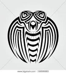 king cobra images illustrations vectors king cobra stock