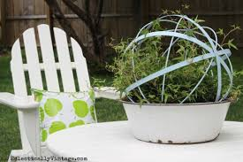 Topiary Planters - make topiary forms from garden orbs