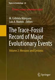 PDF Lacustrine trace fossils and environmental conditions in the