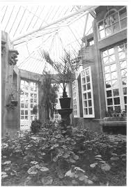 conservatory harlaxton manor archives