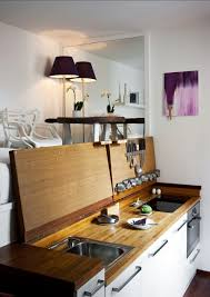 Small Studio Kitchen Ideas Studio Apartment Appliances Houzz Design Ideas Rogersville Us