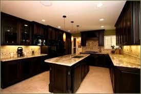 bathroom knockout collection kitchen ideas dark cabinets