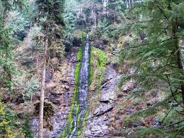 Best Pumpkin Patch Snohomish County by Trail Buffs Keep Your Hikes Fresh With An Updated Snohomish
