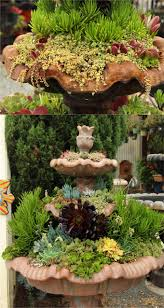 Indoor Succulent Container Gardens How To Plant Beautiful Succulent Gardens In 5 Easy Steps A Piece